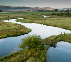 Photo of the Beaverhead River in Southwest Montana