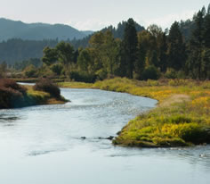 Photo of the Clark Fork River in Southwest Montana