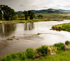 Photo of the Jefferson River in Southwest Montana